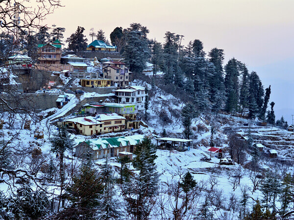 Honeymoon in Himachal Couple Package