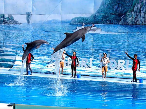 Safari World + Marine Park