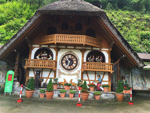 Cuckoo Clock Factory - Rhine Falls - Zurich