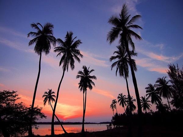 Kandy - Pinnawala - Colombo