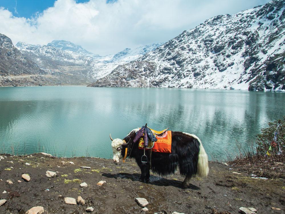 Gangtok to Nathula Pass