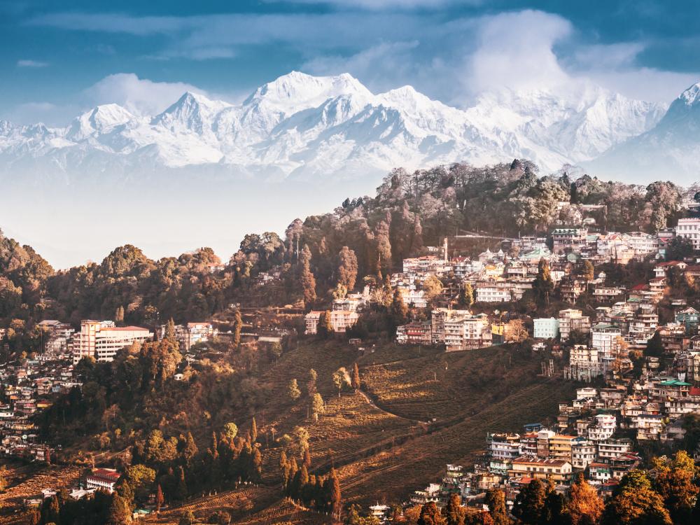 Darjeeling Local Sightseeing